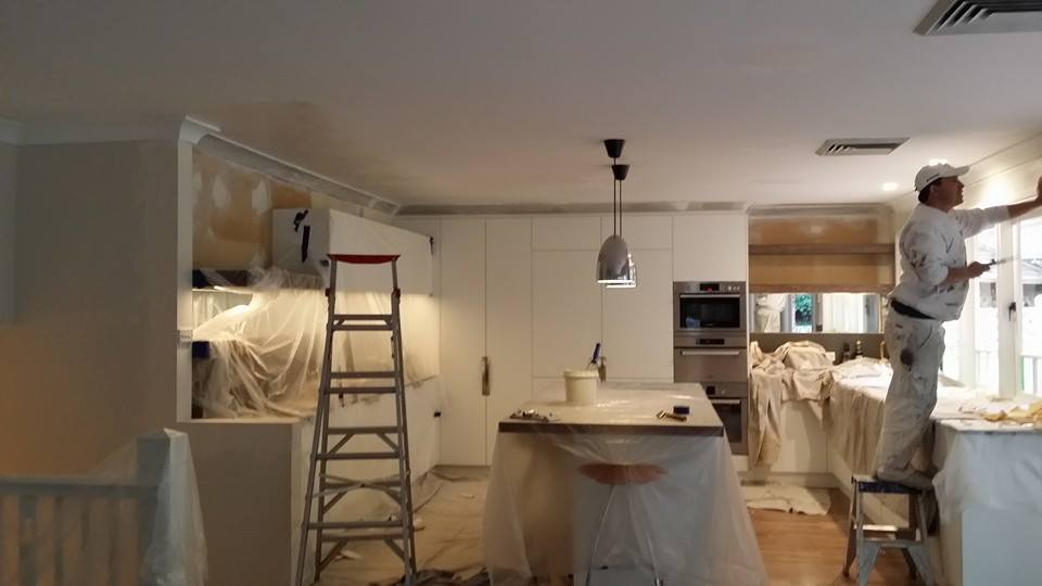 Kitchen House Painting Before