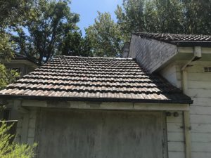 House in Need of Painting