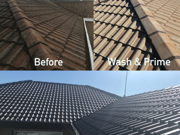 Before and After Roof Painting
